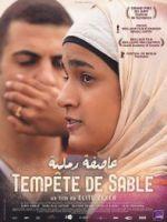 tempete-de-sable2017-0c8f5b64